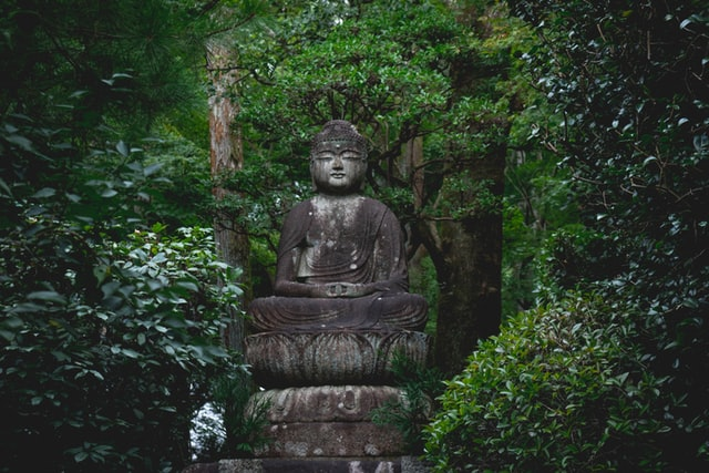 remi bertogliati U2n7ZiBGiws unsplash - 今、京都の芸術がアツい!